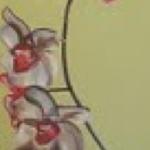 brittanybivins_orchidseyes